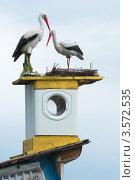 Купить «Аисты на крыше», фото № 3572535, снято 2 июня 2012 г. (c) Зобков Георгий / Фотобанк Лори
