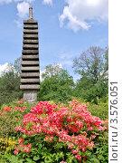 Купить «Главный ботанический сад имени Н.В.Цицина. Цветение рододендрона в Японском саду», фото № 3576051, снято 27 мая 2012 г. (c) Илюхина Наталья / Фотобанк Лори