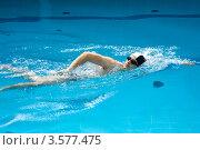 Купить «Пловец плавает в бассейне стилем кроль», фото № 3577475, снято 9 июня 2012 г. (c) katalinks / Фотобанк Лори