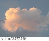 Купить «Золотое облако на голубом небе», фото № 3577799, снято 29 мая 2012 г. (c) Ирина Водяник / Фотобанк Лори