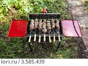 Купить «Мангал с электроприводом», эксклюзивное фото № 3585439, снято 9 июня 2012 г. (c) ФЕДЛОГ / Фотобанк Лори