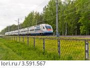 Высокоскоростной комфортабельный электропоезд Allegro (2012 год). Редакционное фото, фотограф Андрей Небукин / Фотобанк Лори