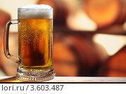 Купить «Пиво», фото № 3603487, снято 9 апреля 2012 г. (c) Stockphoto / Фотобанк Лори