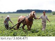 Пахарь (2011 год). Редакционное фото, фотограф Дмитрий Неумоин / Фотобанк Лори
