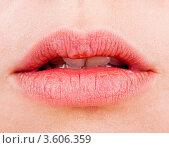 Купить «Женские пухлые губы», фото № 3606359, снято 15 апреля 2012 г. (c) Алексей Сергеев / Фотобанк Лори
