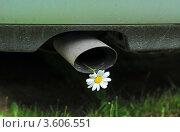 Купить «Автомобильная выхлопная труба с цветком ромашки», эксклюзивное фото № 3606551, снято 10 июня 2012 г. (c) Юрий Морозов / Фотобанк Лори