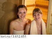 Купить «Улыбающиеся подруги в бане», фото № 3612651, снято 12 марта 2012 г. (c) CandyBox Images / Фотобанк Лори