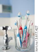 Купить «Большие и маленькие зубные щетки в ванной в стакане», фото № 3617427, снято 22 сентября 2011 г. (c) Monkey Business Images / Фотобанк Лори