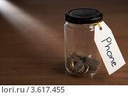 "Купить «Монетки в банке с ярлыком ""Телефон""», фото № 3617455, снято 24 августа 2011 г. (c) Monkey Business Images / Фотобанк Лори"
