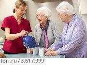 Купить «Сиделка наливает чай пожилым женщинам», фото № 3617999, снято 14 декабря 2011 г. (c) Monkey Business Images / Фотобанк Лори