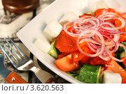 Купить «Салат «Шопский», печеный болгарский перец, помидоры, огурцы, лук, сыр «фета», салатная заправка на растительном масле», фото № 3620563, снято 1 июня 2011 г. (c) Виктор Топорков / Фотобанк Лори