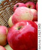 Красные яблоки в корзине, крупный план. Стоковое фото, фотограф Калятина Наталья / Фотобанк Лори