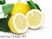 Спелый лимон. Стоковое фото, фотограф Gerasimova Inga / Фотобанк Лори