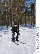 Купить «Мальчик на лыжах», фото № 3626179, снято 26 марта 2012 г. (c) Евгений Мишуров / Фотобанк Лори