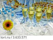 Купить «Вино, вода, закуски и цветок на шведском столе», фото № 3633571, снято 18 ноября 2010 г. (c) Losevsky Pavel / Фотобанк Лори