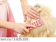 Купить «Девочка расчесывает искусственные волосы куклы», фото № 3635035, снято 24 марта 2011 г. (c) Losevsky Pavel / Фотобанк Лори