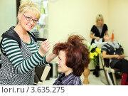 Купить «Парикмахер делает женщине причёску в косметическом салоне», фото № 3635275, снято 18 мая 2011 г. (c) Losevsky Pavel / Фотобанк Лори