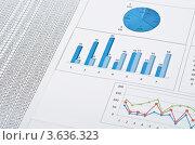 Купить «Финансовые бумаги с графиками и диаграммами», фото № 3636323, снято 19 июня 2019 г. (c) Сергей Дашкевич / Фотобанк Лори