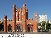 Королевские ворота (2012 год). Редакционное фото, фотограф Svet / Фотобанк Лори