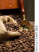 Купить «Кофе в мешке с совком», фото № 3641863, снято 23 мая 2012 г. (c) Юлий Шик / Фотобанк Лори