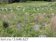 Заброшенные могилы. Стоковое фото, фотограф Сергей Флоренцев / Фотобанк Лори