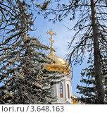 Купол храма. Стоковое фото, фотограф Илья Шкоденко / Фотобанк Лори