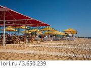 Купить «Летнее кафе с красными и желтыми зонтами на песочном пляже», фото № 3650239, снято 19 октября 2018 г. (c) SummeRain / Фотобанк Лори
