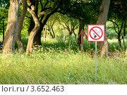 """Запрещающий знак """"Не курить!"""" около леса. Стоковое фото, фотограф Алексей Омельянович / Фотобанк Лори"""