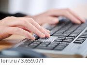Купить «Руки печатают на клавиатуре», фото № 3659071, снято 9 апреля 2012 г. (c) Elnur / Фотобанк Лори
