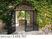 Кованные ворота (2008 год). Стоковое фото, фотограф Александр Иванович Кочунов / Фотобанк Лори