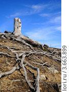Купить «Безжизненная земля», фото № 3663899, снято 27 мая 2012 г. (c) Валерий Александрович / Фотобанк Лори