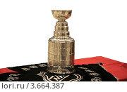 Купить «Хоккейный кубок Стенли установлен на презентационном столе, изолировано», фото № 3664387, снято 17 июля 2018 г. (c) Роман Коротков / Фотобанк Лори