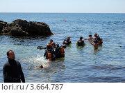 Дайвинг. Атлеш. Крым (2009 год). Редакционное фото, фотограф Кутдусова Марина / Фотобанк Лори