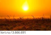 Рассвет. Стоковое фото, фотограф Елена Корнеева / Фотобанк Лори