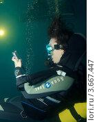 """Первый в мире TWEET, отправленный из-под воды с мобильного телефона. Одесса, дельфинарий """"Немо"""" (2010 год). Редакционное фото, фотограф Некрасов Андрей / Фотобанк Лори"""