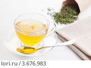 Чашка чая. Стоковое фото, фотограф Gerasimova Inga / Фотобанк Лори