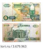 Купить «20 Замбийских квача», фото № 3679963, снято 11 июня 2012 г. (c) Некрасов Андрей / Фотобанк Лори