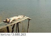 Купить «Девушка у пруда загорает и ловит рыбу», фото № 3680263, снято 10 мая 2009 г. (c) Ирина / Фотобанк Лори