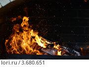 Огонь камин. Стоковое фото, фотограф Владимир Булгаков / Фотобанк Лори