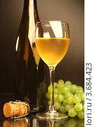 Купить «Композиция с бокалом белого вина, бутылкой и виноградом», фото № 3684423, снято 13 мая 2012 г. (c) Виктор Топорков / Фотобанк Лори