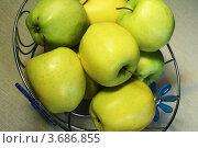 Купить «Зеленые яблоки», фото № 3686855, снято 1 мая 2010 г. (c) Александр Скопинцев / Фотобанк Лори