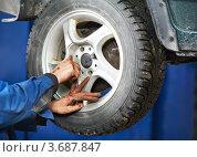 Купить «Автомеханик устанавливает колесо на автомобиль», фото № 3687847, снято 31 марта 2012 г. (c) Дмитрий Калиновский / Фотобанк Лори