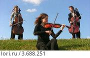 Купить «Трое музыкантов играют на скрипке и виолончели», видеоролик № 3688251, снято 1 апреля 2010 г. (c) Losevsky Pavel / Фотобанк Лори