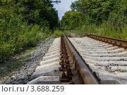 Железная дорога в лесу. Стоковое фото, фотограф Андрей Корж / Фотобанк Лори