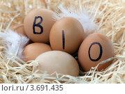 """Купить «Свежие яйца с надписью """"BIO""""», фото № 3691435, снято 2 июня 2020 г. (c) Marina Appel / Фотобанк Лори"""
