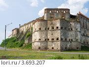 Купить «Старинный замок на Украине», эксклюзивное фото № 3693207, снято 10 июня 2008 г. (c) Солодовникова Елена / Фотобанк Лори