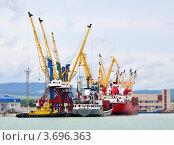 Купить «Обработка груза в порту Новороссийска», фото № 3696363, снято 25 мая 2012 г. (c) Анна Мартынова / Фотобанк Лори