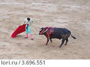 Испанская коррида (2011 год). Редакционное фото, фотограф Артур Даминов / Фотобанк Лори