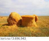Купить «Стога», фото № 3696943, снято 30 июня 2012 г. (c) Артём Дудкин / Фотобанк Лори