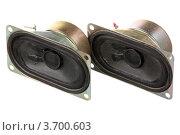 Купить «Две старые динамические головки», фото № 3700603, снято 27 июля 2012 г. (c) Игорь Веснинов / Фотобанк Лори